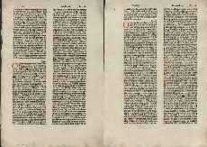Go to Biblia [German] [folium 22] item page