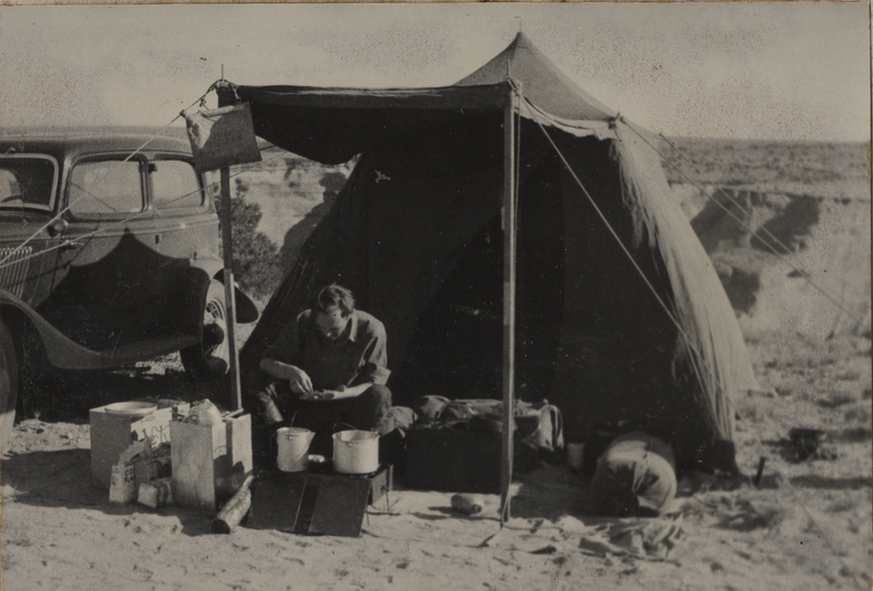Go to Arizona. Camping near Canyon de Chelly item page