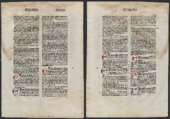 Go to Summa angelica de casibus nonscientific [folium 15] item page