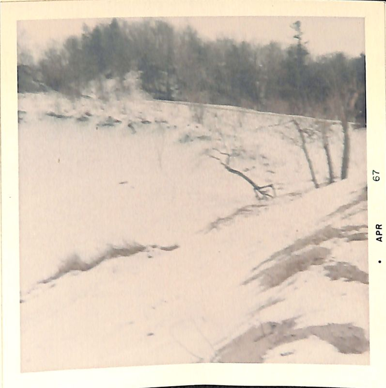 Go to Saugatuck sand dunes covered in snow item page