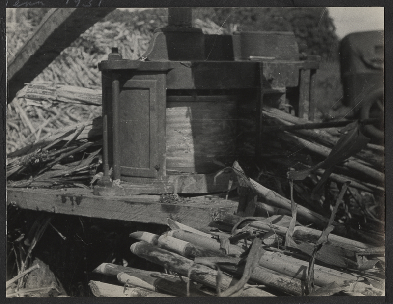Go to Tennessee. Sorghum molasses processing on Reelfoot Lake item page