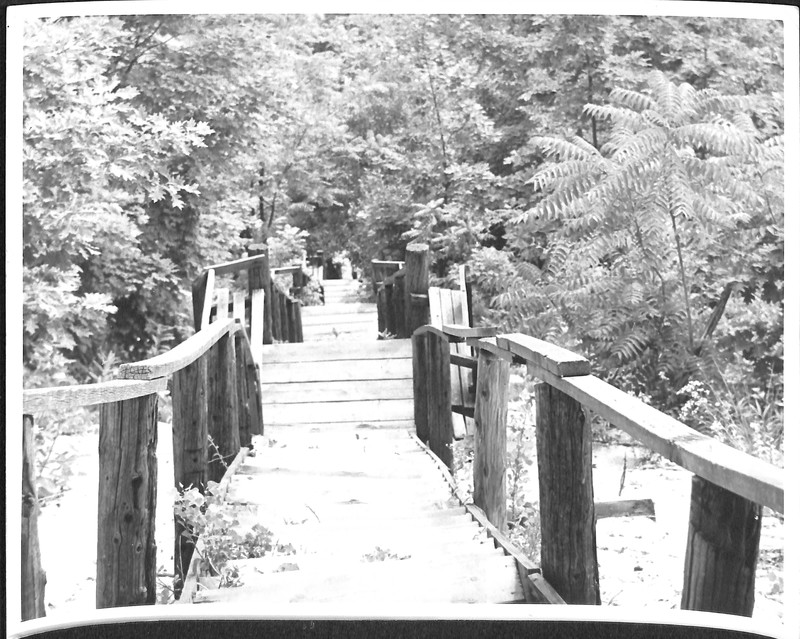 Go to Mt. Baldhead Stairs item page