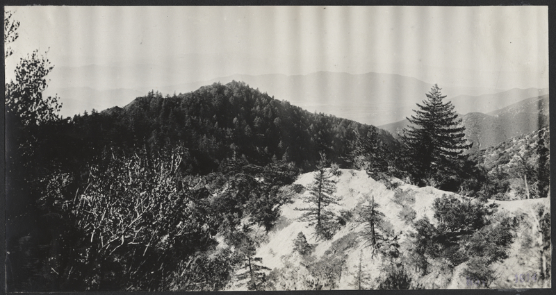 Go to California. Looking southwest on Mount Lowe item page