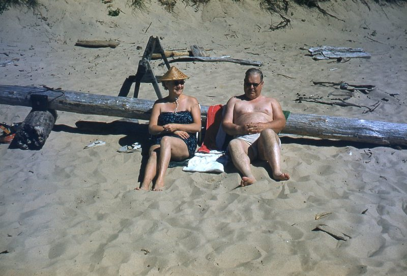 Go to Couple leaning against log on the beach item page