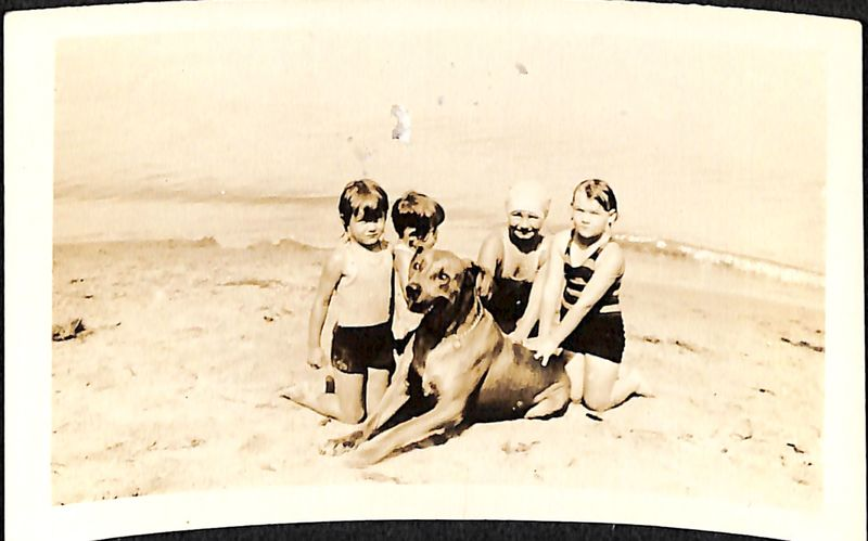 Go to Group of children on beach item page