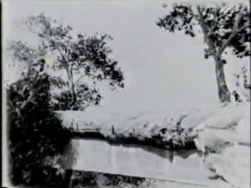 Go to Arizona. Petrified Forest, 1932 item page