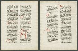 Go to Rudimentum novitiorum [folium 195] item page