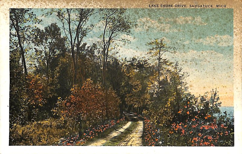 Lake Shore Drive, Saugatuck, Mich. postcard