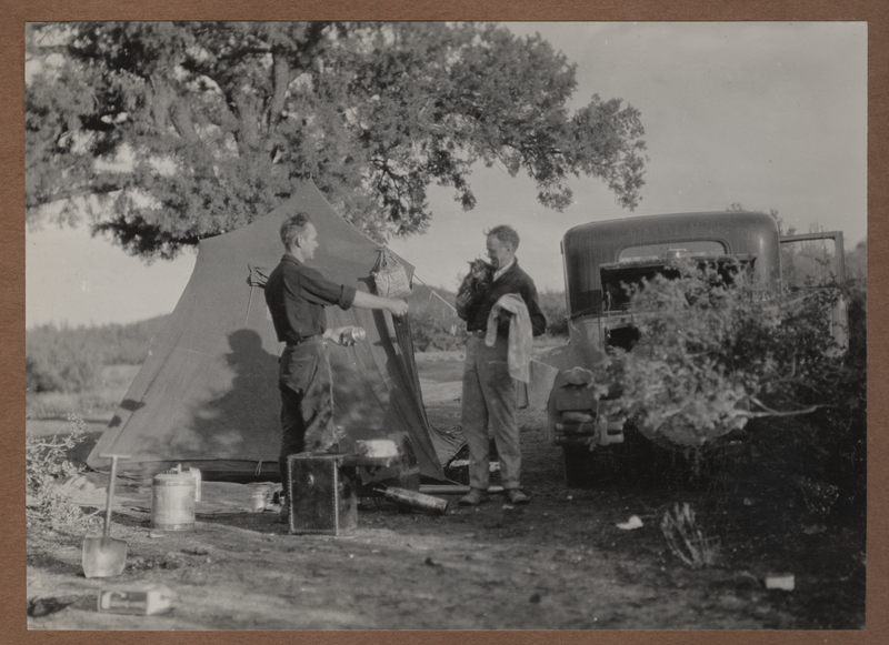Go to Arizona. Camp in the Prescott National Forest item page