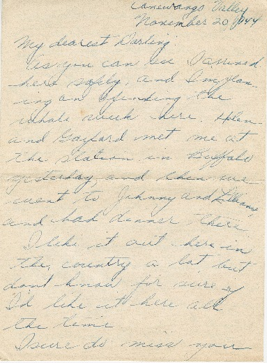 Letter from Agnes Van Der Weide to Joe Olexa, November 20, 1944