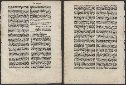 Go to Sermones de laudibus sanctorum [folium 20] item page