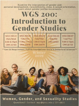 Go to Introduction to Gender Studies item page