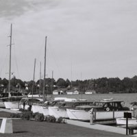 Go to Michigan. Charlevoix boat dock item page