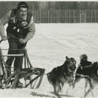 Go to Man mushing for dog sled race item page