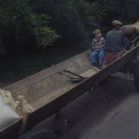 Go to Farm cart in  Poland item page