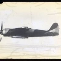 Go to Sea Fury British carrier-based fighter item page