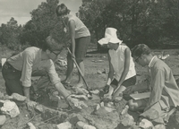 Students digging at archaeological site